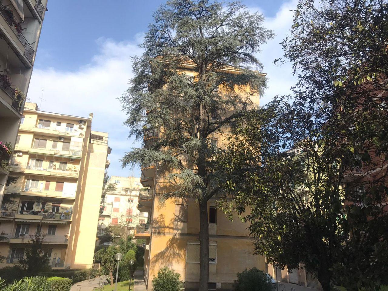 GARBATELLA VIA R. RAIMONDI GARIBALDI